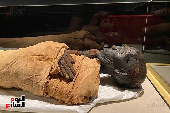 المومياوات الملكية متاحة لاستقبال الزوار بالمتحف القومى للحضارة (12)