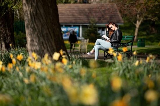 امرأة تقرأ في حديقة سانت نيكولاس