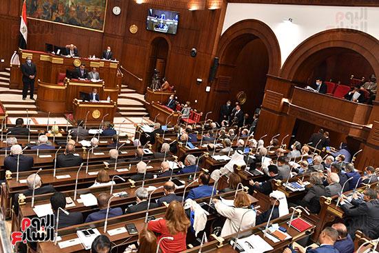 جلسة مجلس الشيوخ اليوم (3)