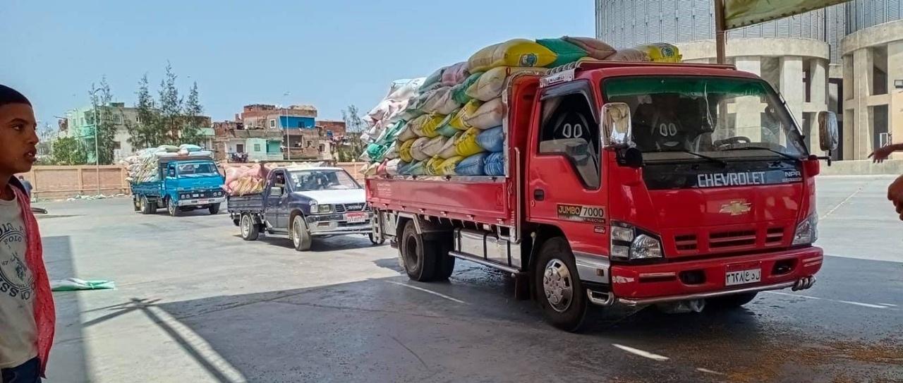 استقبال القمح بشون كفر الشيخ