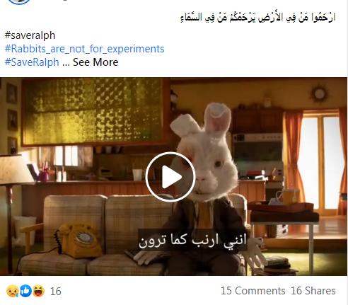 رواد السوشيال ميديا عن تعذيب الأرانب