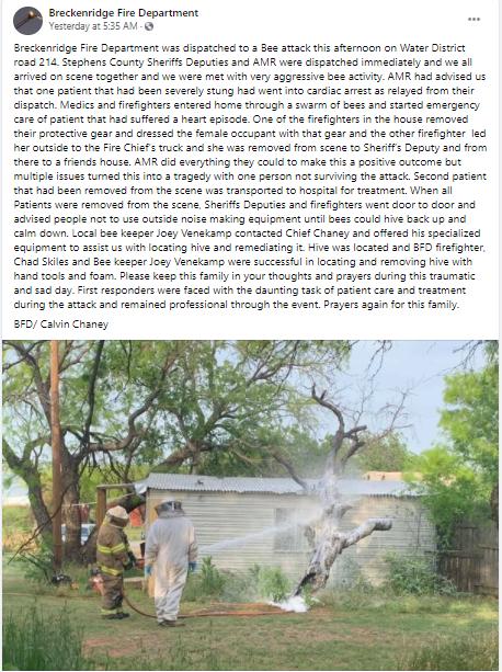 سرب من النحل يهاجم رجلا ويقتله في ولاية تكساس الأمريكية (1)
