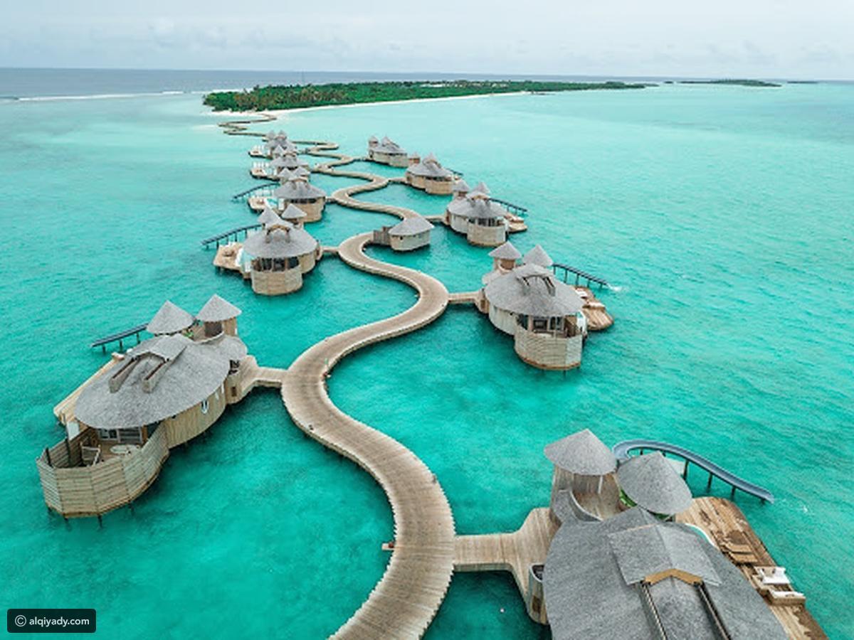 المالديف 2
