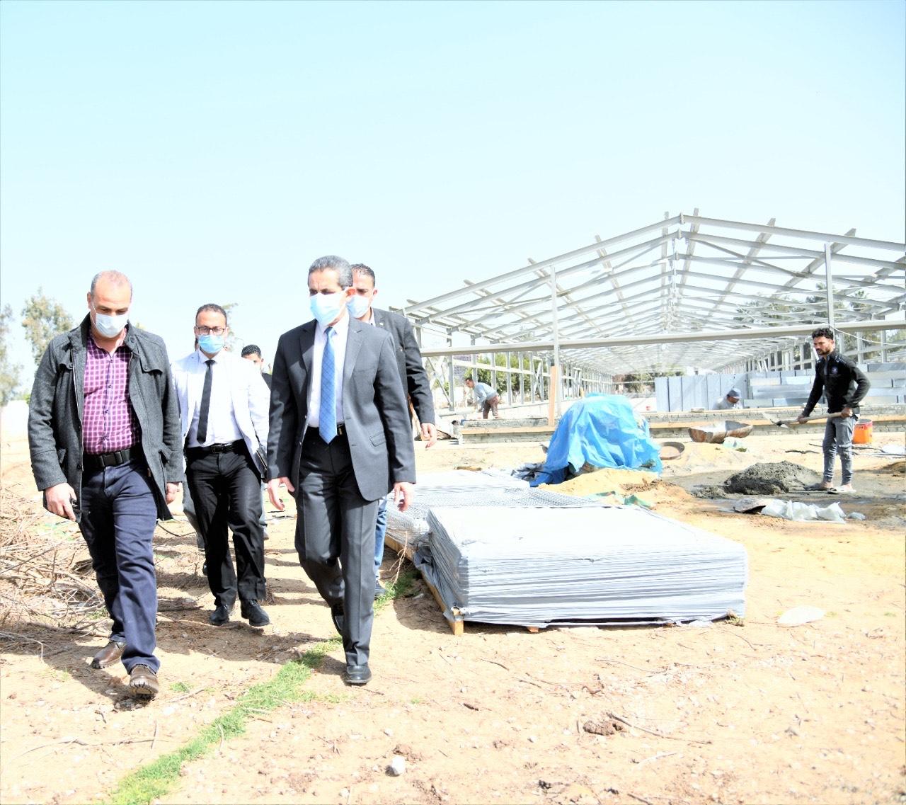 تطوير مزارع البيض بكفر الشيخ سليم