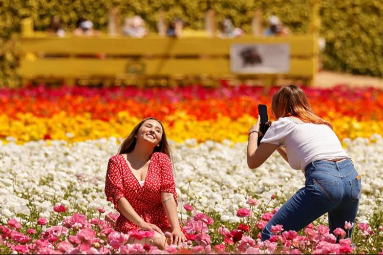الزوار يلتقطون صورا تذكارية داخل الحديقة