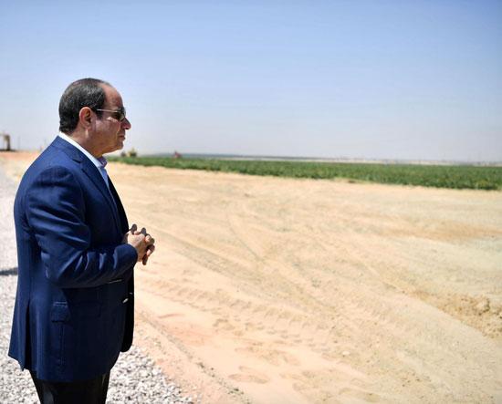 الرئيس-السيسى-يتفقد-مشروع--مستقبل-مصر-(14)