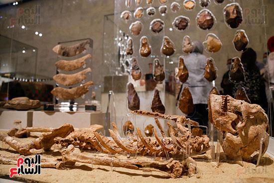 هيكل عمره 35 ألف سنة