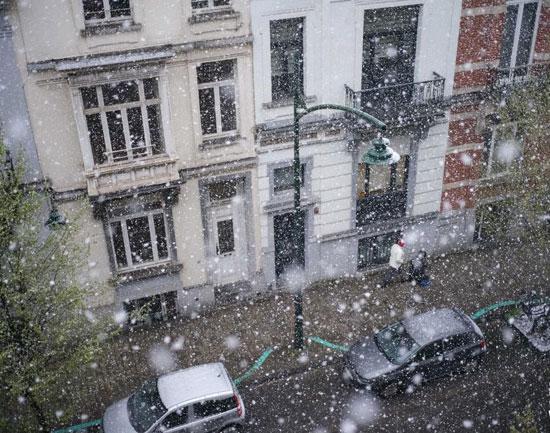 عاصفة ثلجية فى بلجيكا (4)