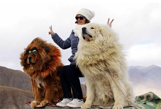 جبال التبت (13)
