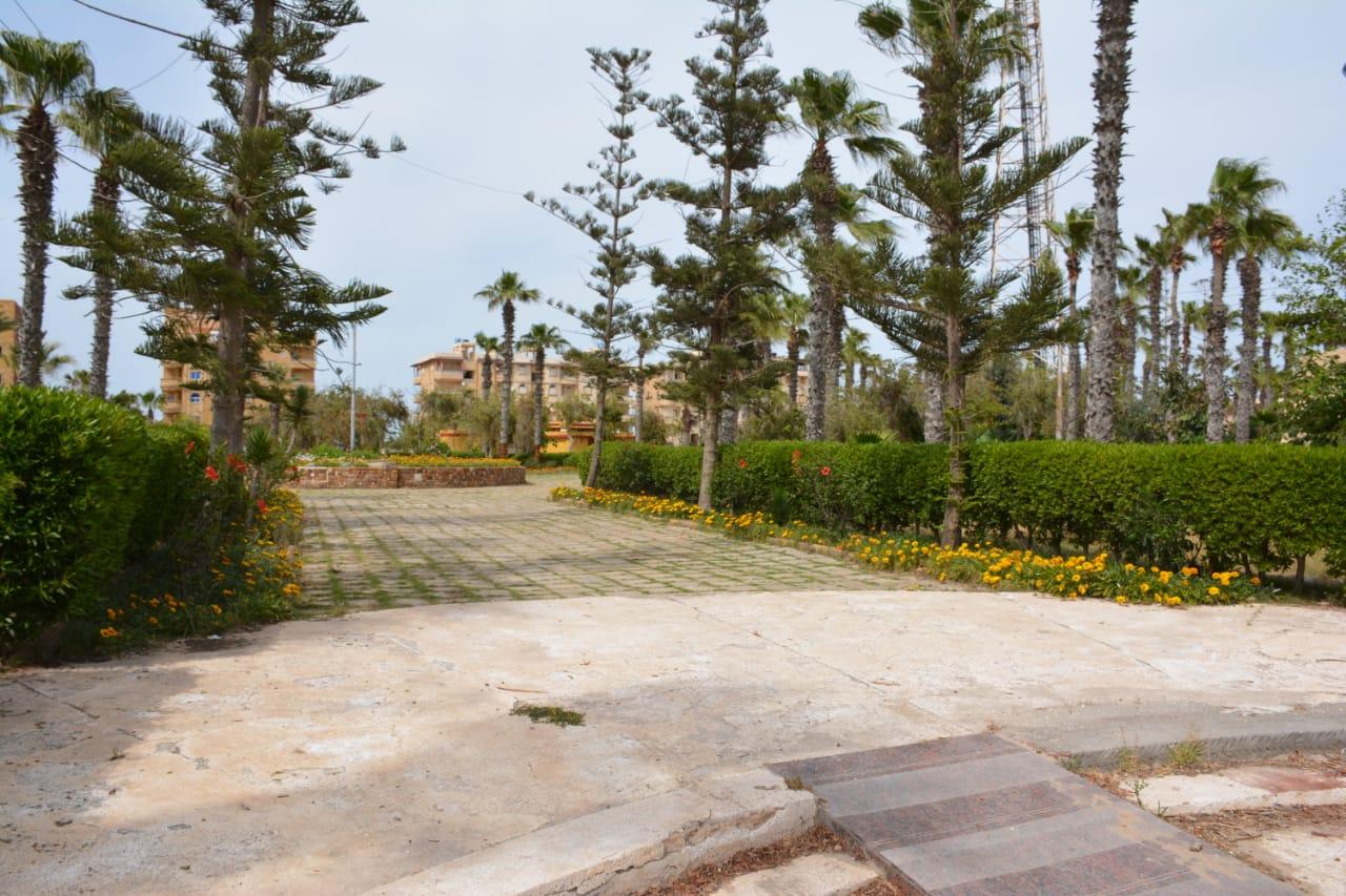 خلق الحدائق بالدقهلية