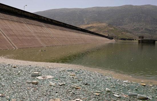 فيروس قتل أسماك الشبوط في البحيرة