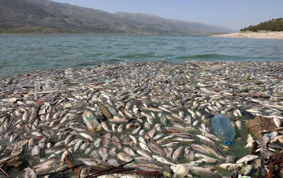تم حظر الصيد في الخزان منذ عدة أعوام