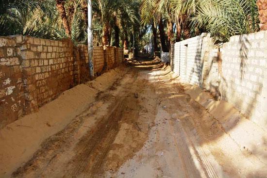 تنفيذ اكبر خطة لتطوير العشوائيات بمدينة الخارجة (11)