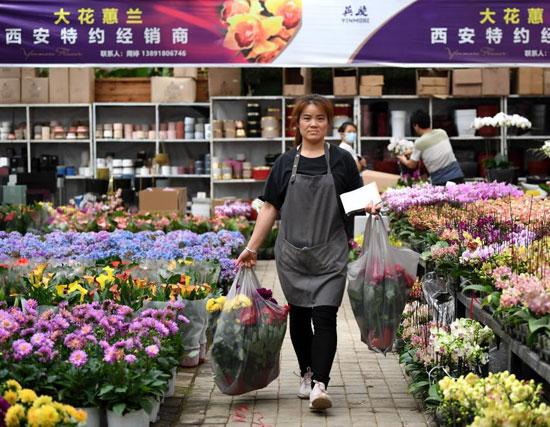 معرض بكين الدولى (11)