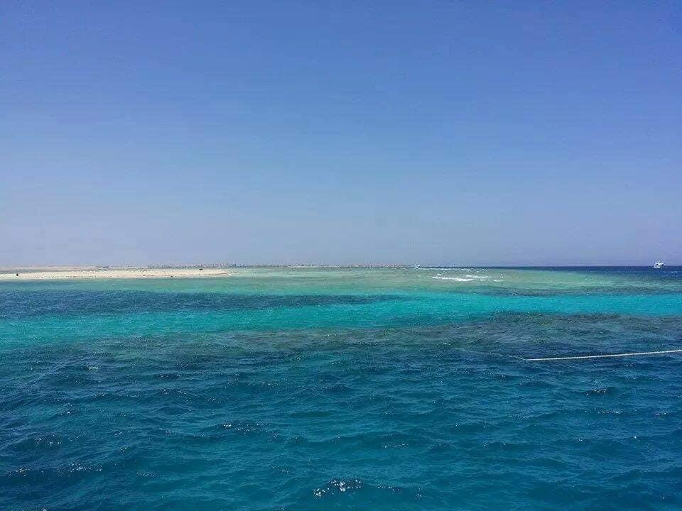 الجزر البحرية تحل محل الشواطئ المغلقة في العيد  (3)
