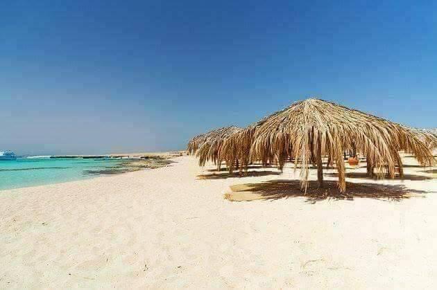 الجزر البحرية تحل محل الشواطئ المغلقة في العيد  (1)