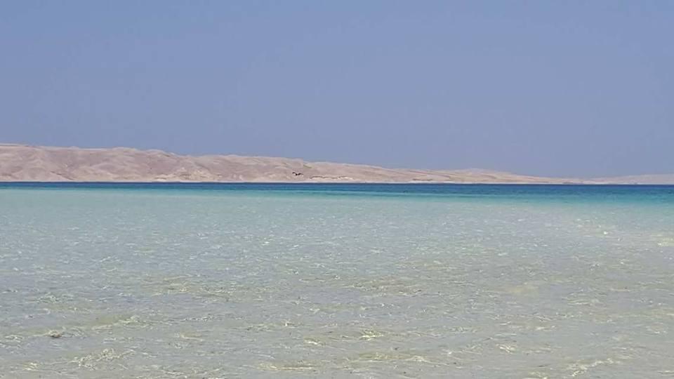 الجزر البحرية تحل محل الشواطئ المغلقة في العيد  (5)