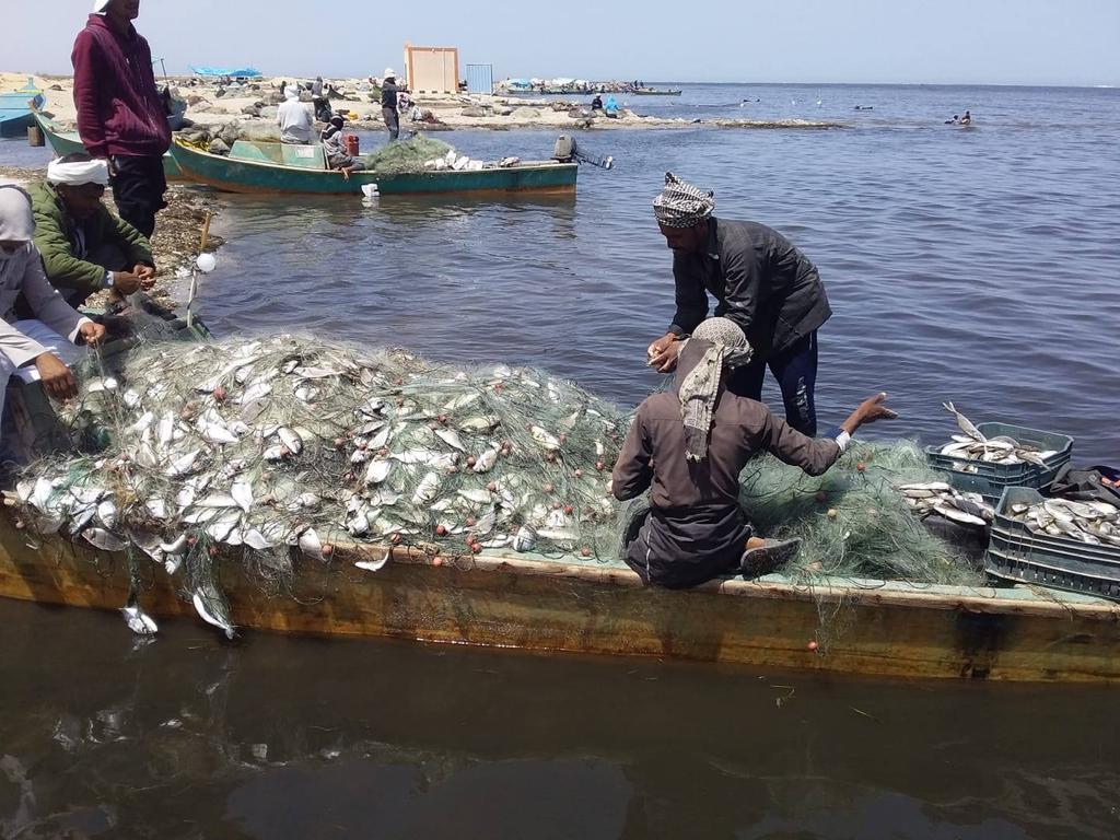 خلال صيد الأسماك