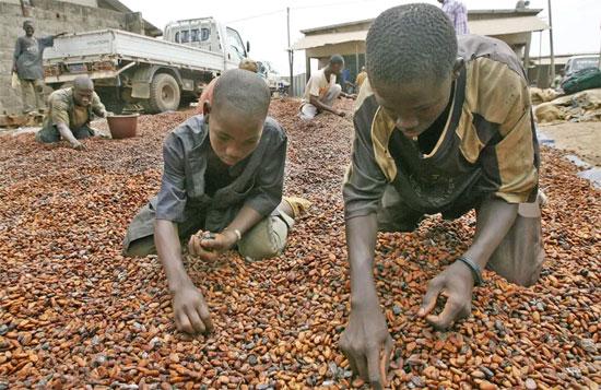 عمالة الاطفال (2)