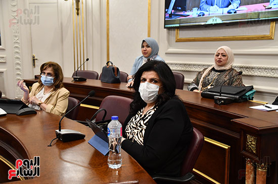 مجلس الشيوخ (13)