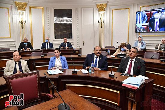مجلس الشيوخ (12)