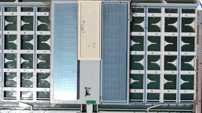 محطة معالجة مياه مصرف المحسمة بسرابيوم (4)