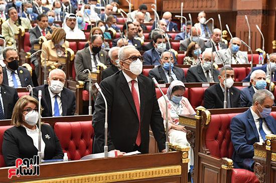 مجلس الشيوخ (8)