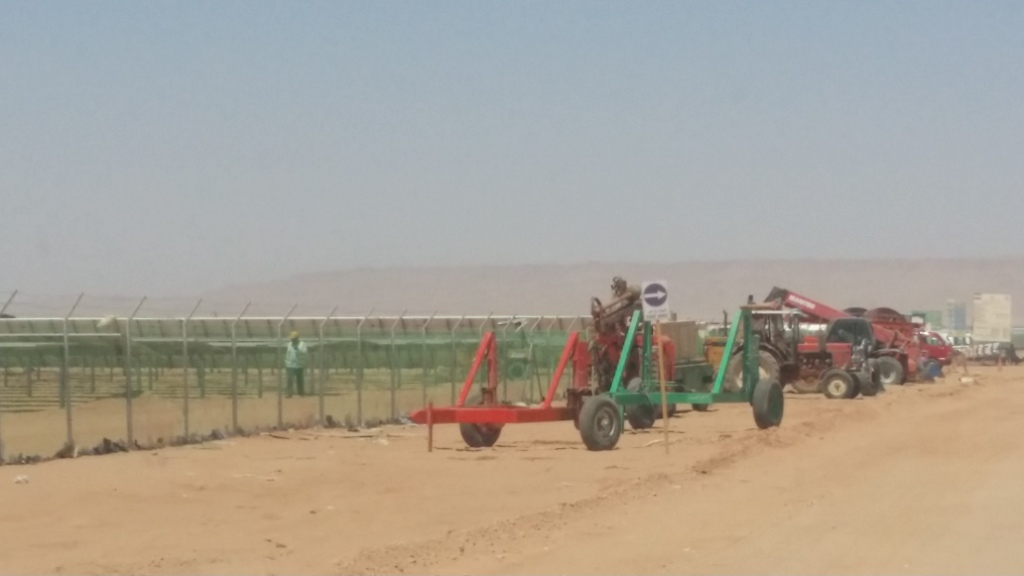 مشروع الطاقة الشمسية بنبان بأسوان (4)
