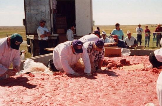 أكبر قطعة لحم هامبرجر دائرية