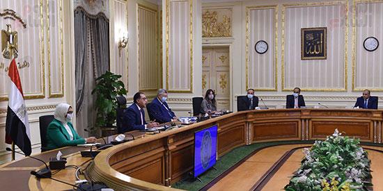 مؤتمر صحفى لرئيس الوزراء (10)