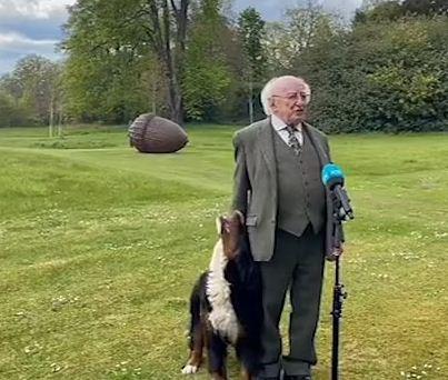الكلب يجذب الرئيس