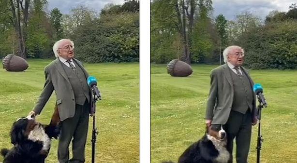الكلب يلعب مع الرئيس
