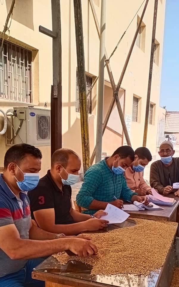 لجنة معاينة القمح بصومعة كفر الشيخ
