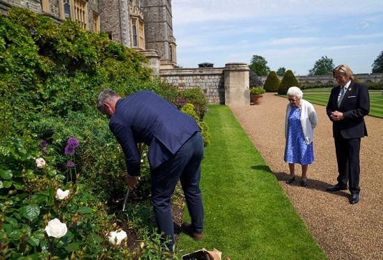 تم زرع زهرة دوق إدنبرة في حديقة إيست تيراس في وندسور
