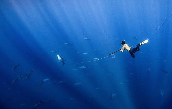 رجل يصطاد بالرمح قبالة ساحل كوستاريك
