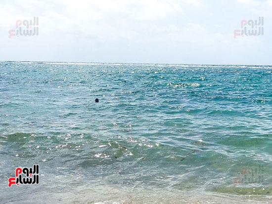 شواطئ الاسكندرية (4)
