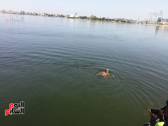 السباح-العالمى-سيد-الباروكى-يعبر-قناة-السويس--(5)