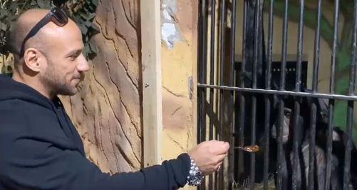 احمد مكى مع القرد