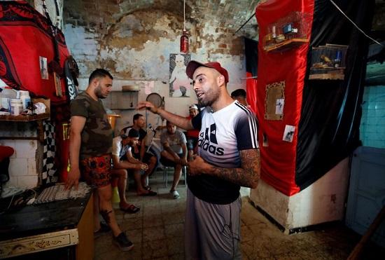 قتال الكباش وسيلة ترفيه للشباب التونسي
