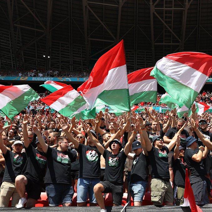 جماهير المنتخب المجري