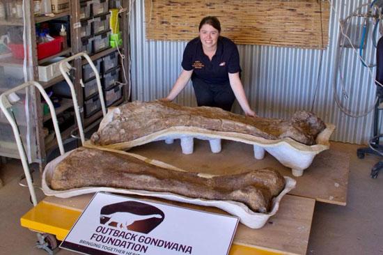 ديناصور العصر الطباشيرى (1)
