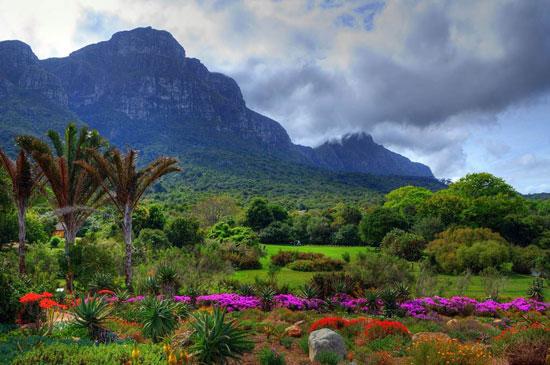 أجمل الحدائق (1)