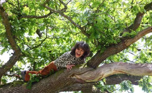 العجوز تتسلق الشجر