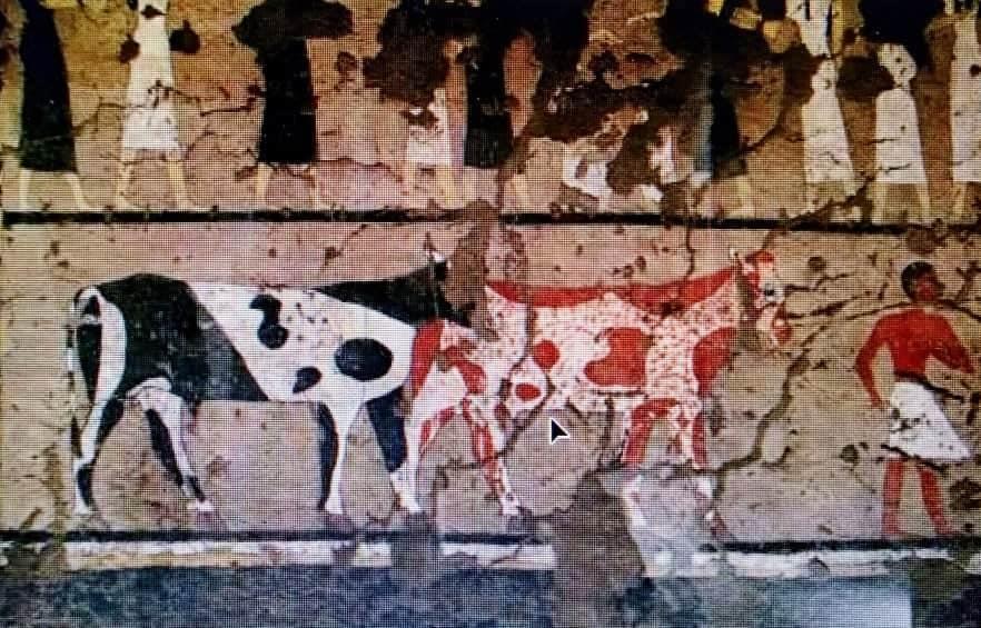 الأضحية عند القدماء المصريين