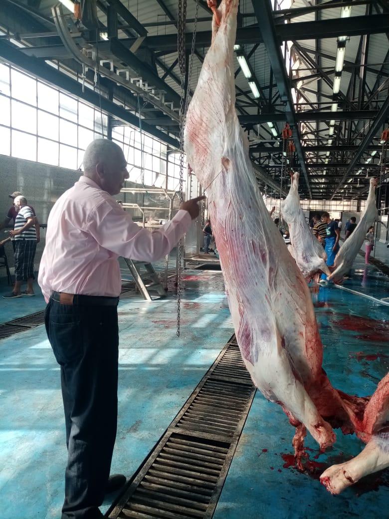 ذبح اللحوم بمجازر القليوبية