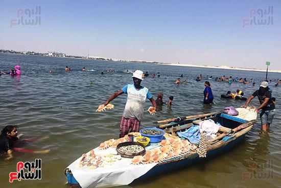 شواطئ الإسماعيلية (1)
