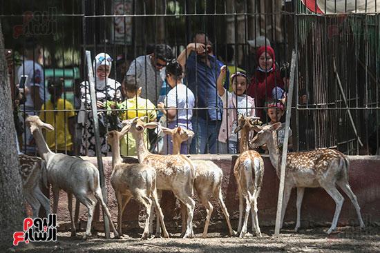 زوار حديقه الحيوان