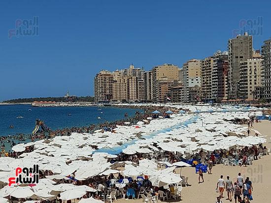 شواطئ-الإسكندرية
