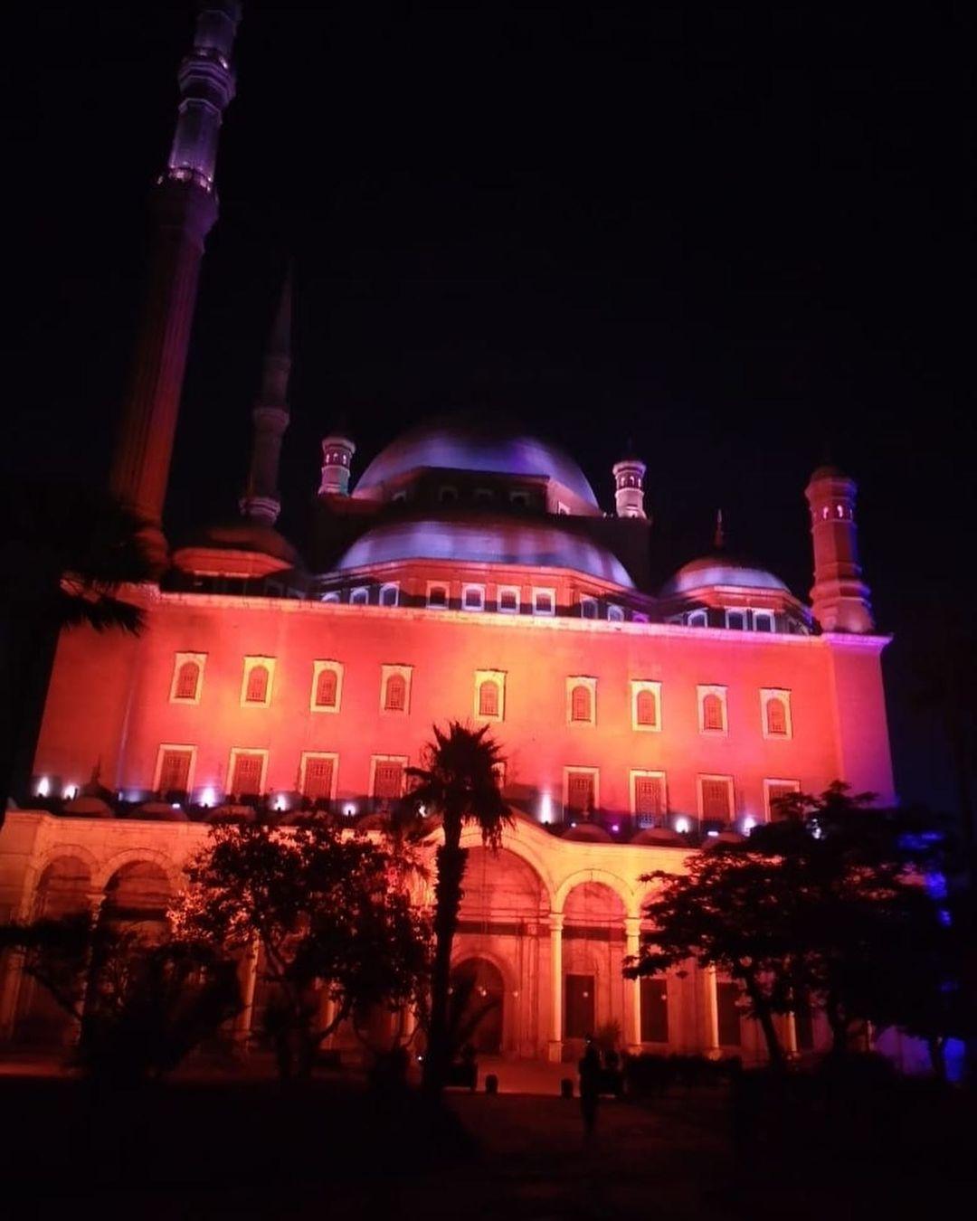قلعة محمد على تحتفل باليوم العالمى للكبد
