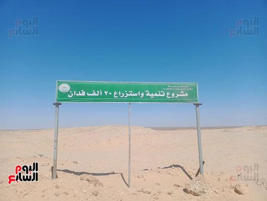 مشروع استزراع 20-ألف فدان 1